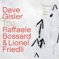 Dave Gisler Trio, Rabbits on the Run